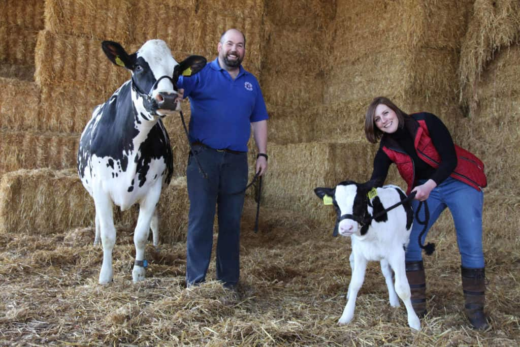Two dairy cows and Robinson family